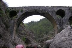 Мост который построил: