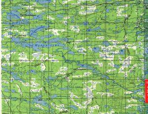 Карта реки Воньга