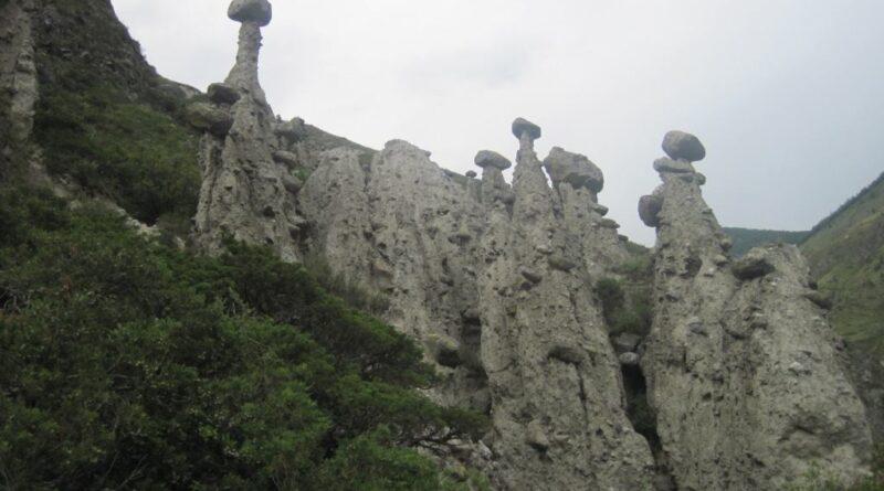 Фото 66 – «Каменные грибы»