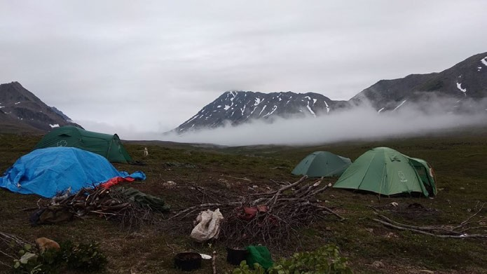 ФОТО. Чукчи кочуют с туристскими палатками. Под горой ночует стадо. Небольшое, до 3-х тысяч голов. В Якутии я видела стадо до 14 тысяч голов.
