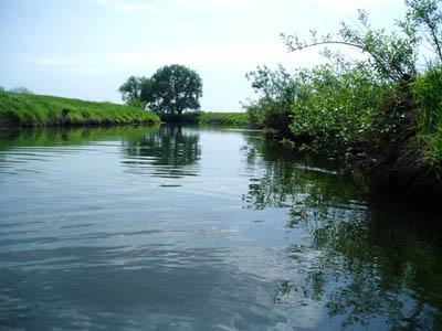 Река за г.Рыбное