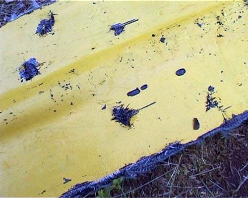 Алтай 2008. Противостояние на Чулышмане
