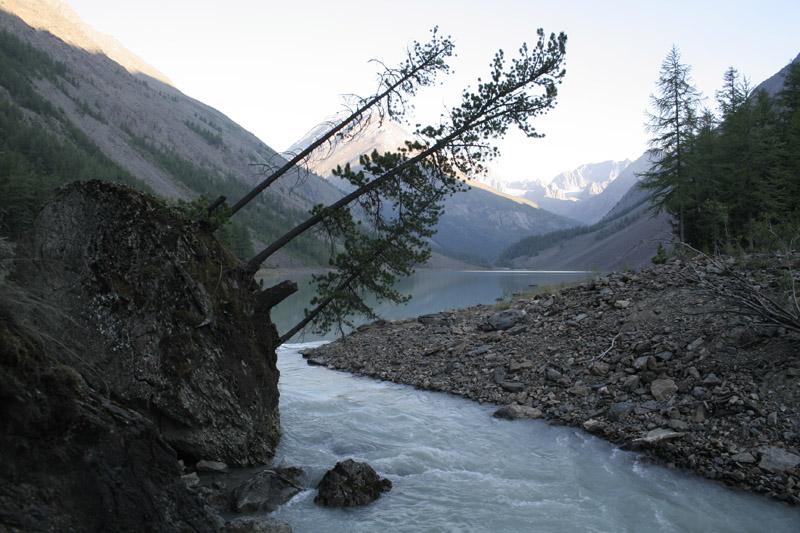 Река Камрю, вытекающая из одноименного озера.  Бедные иственницы…