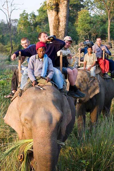 (фото 57) Катание на слонах в нац. Парке Бардия