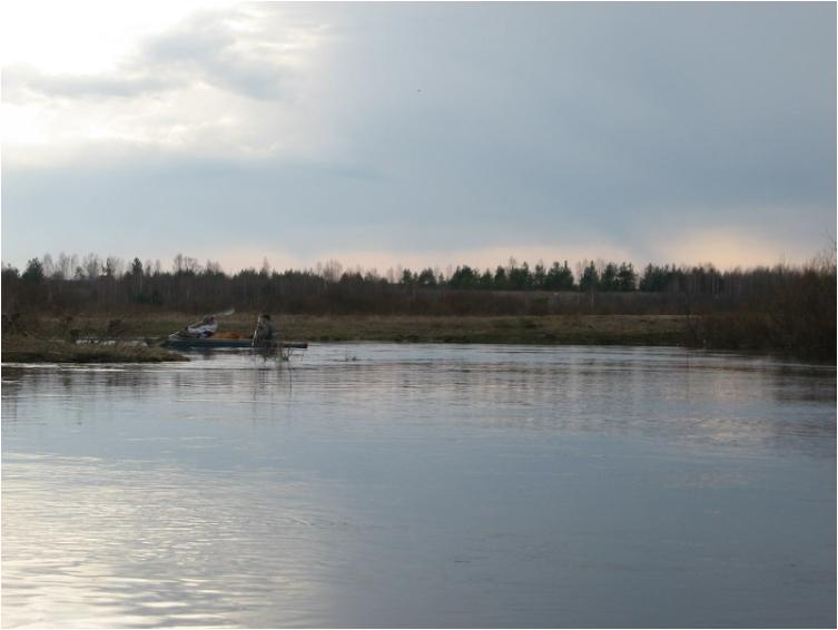 Отчёт о водном туристском походе по рекам Колпь, Гусь в районе Владимирской и Рязанской области