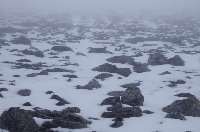 Выше 1700 м. свежий снег.